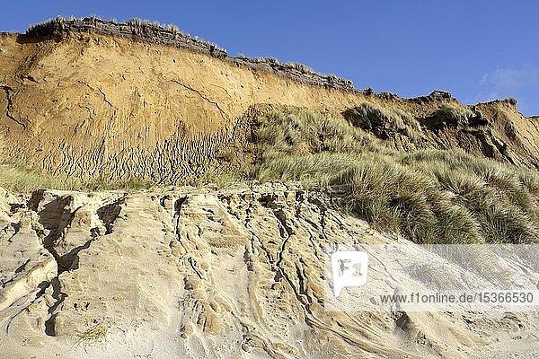 Rotes Kliff  imposante Steilküste bei Kampen  Sylt  Nordfriesische Insel  Nordsee  Nordfriesland  Schleswig-Holstein  Deutschland  Europa