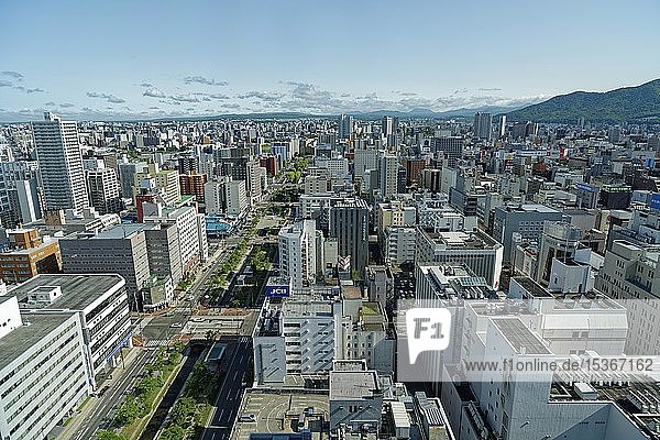 View of the city from the television tower  Sapporo  Hokkaido  Japan  Asia