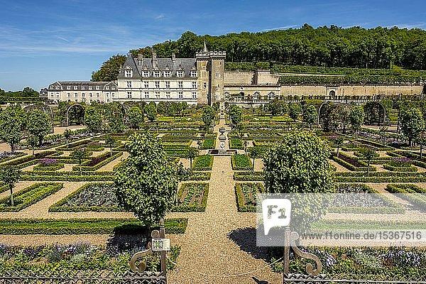 Chateau de Villandry and its gardens  Indre-et-Loire department  Centre-Val de Loire  France  Europe