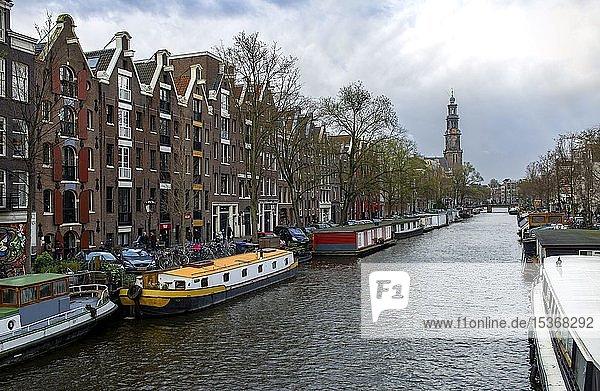 Hausboote an der Prinsengracht mit Turm der Westerkerk  Amsterdam  Nordholland  Niederlande  Europa