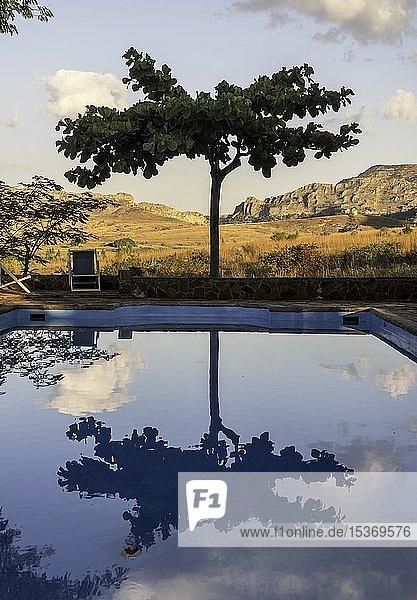 Baum spiegelt sich in Swimmingpool  Lodge im Isalo Nationalpark  Madagaskar  Afrika