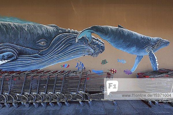 Graffiti,  Buckelwal mit Jungtier,  Wand mit Einkaufswagen am Supermarkt,  Liberia,  Provinz Guanacaste,  Costa Rica,  Mittelamerika