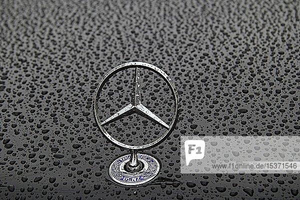 Mercedes-Stern  Regentropfen auf Autolack