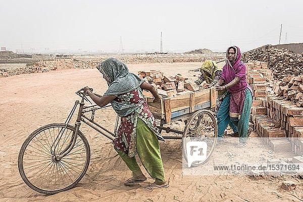 Arbeiterinnen einer Ziegelei  Frauen transportieren Ziegel auf einer Rikscha  Dhaka  Bangladesch  Asien