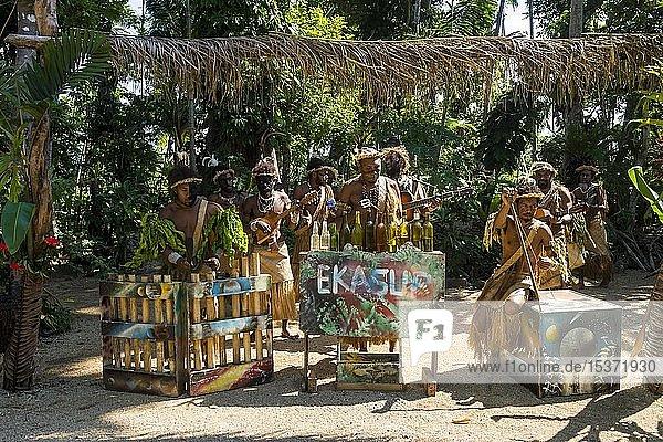 Group of traditional dressed men playing music,  Ekasup cultural village,  Efate,  Vanuatu,  Oceania