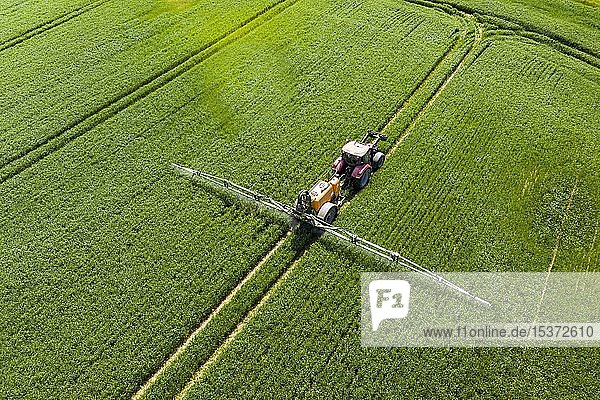 Luftaufnahme  Traktor beim Besprühen eines Feldes mit Dünger  Wetterau  Hessen  Deutschland  Europa