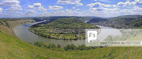 Bopparder Hamm  die größte Rheinschleife bei Boppard  Rhein-Hunsrück-Kreis  Oberes Mittelrheintal  Rheinland-Pfalz  Deutschland  Europa