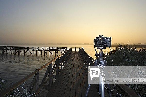 Kamera auf Stativ bei Aufnahme des Sonnenaufgangs am Federsee,  Naturschutzgebiet,  Bad Buchau,  Oberschwaben,  Deutschland,  Europa