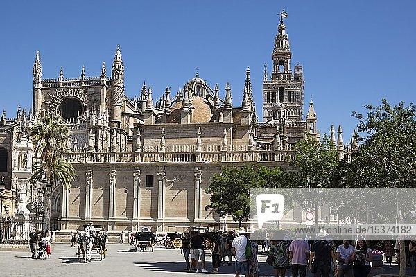 Kathedrale Santa Maria de la Sede  Sevilla  Andalusien  Spanien  Europa