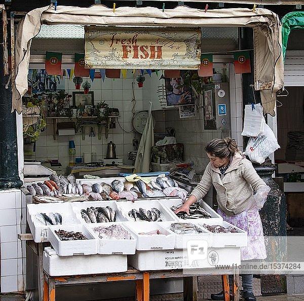 Fischstand mit Meeresfischen in der Auslage  Markt Mercado de Bolhão  Porto  Portugal  Europa