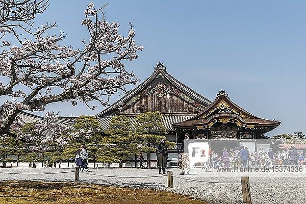 Palast  Nijo Castle Ninomaru palace  Nij? Castle  ehemalige Burg der Shogune  Kyoto  Japan  Asien