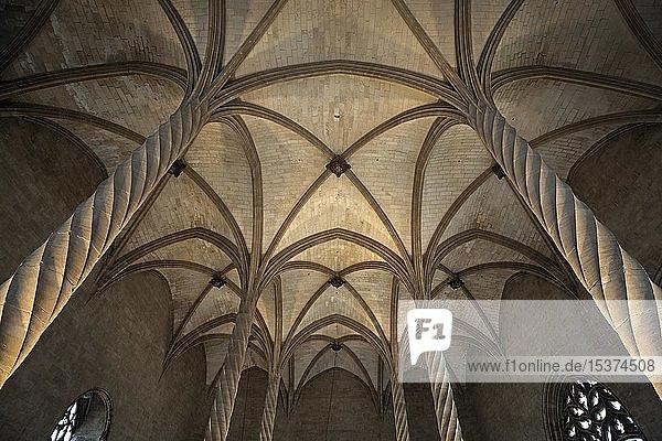 Innenansicht  Säulen mit Deckengewölbe  Llotja dels Mercaders oder Llotja de Palma  Palma de Mallorca  Mallorca  Balearen  Spanien  Europa