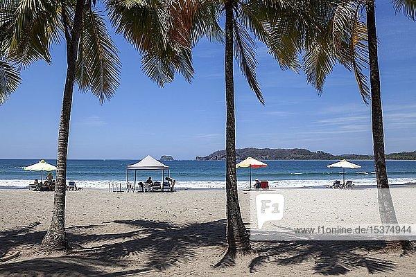 Sandstrand mit Palmen  Playa Carrillo  Samara  Halbinsel Nicoya  Provinz Guanacaste  Costa Rica  Mittelamerika
