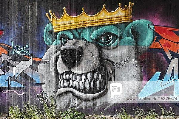 Graffiti  Kopf eines Bären mit goldener Krone  gefletschten Zähne  Neuss  Nordrhein-Westfalen  Deutschland  Europa
