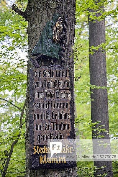 Reim auf Holztafel  Wanderweg Steckeschlääfer-Klamm im Morgenbachtal  Binger Stadtwald  Bingen am Rhein  Rheinland-Pfalz  Deutschland  Europa