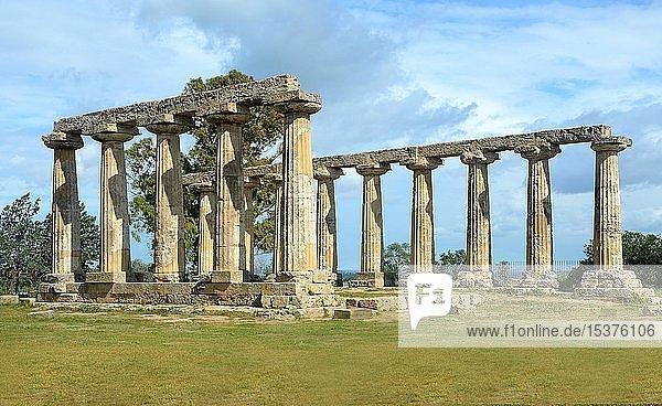 Säulen des dorischen Tempels von Hera  archäologische Stätte von Metaponto  Bernalda  Basilikata  Italien  Europa