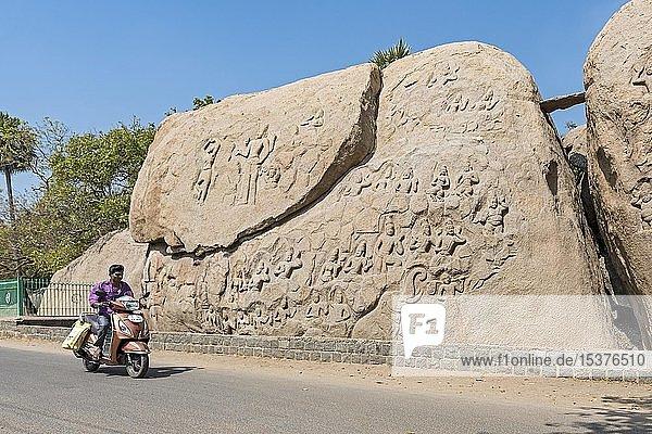 Mann auf dem Motorrad vor unvollendeten Steinreliefs  Mahabalipuram  Mamallapuram  Indien  Asien