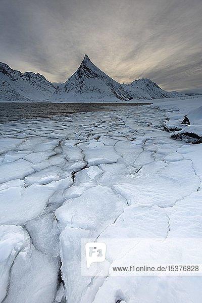 Fjord mit Eisschollen im Winter  hinten Berg  Fredvang  Lofoten  Norwegen  Europa