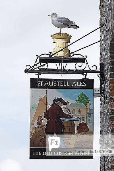 Nasenschild  Pub am Hafen  Padstow  Cornwall  England  Großbritannien  Europa