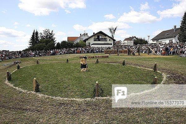 Parcour für Holzstammziehen bei den schwäbischen Highlandgames in Kreenheinstetten  Oberschwaben  Baden-Württemberg  Deutschland  Europa