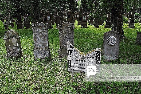 Jüdischer Friedhof  Grabsteine  Bad Buchau  Oberschwaben  Baden-Württemberg  Deutschland  Europa