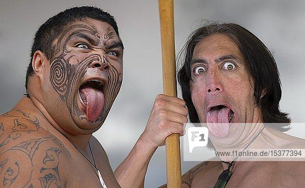 Zwei Tänzer beim rituellen Haka Tanz mit herausgestreckter Zunge  Folklore Darbietung der Maori  Whakarewarewa  Rotorua  Bay of Plenty  Nordinsel  Neuseeland  Ozeanien