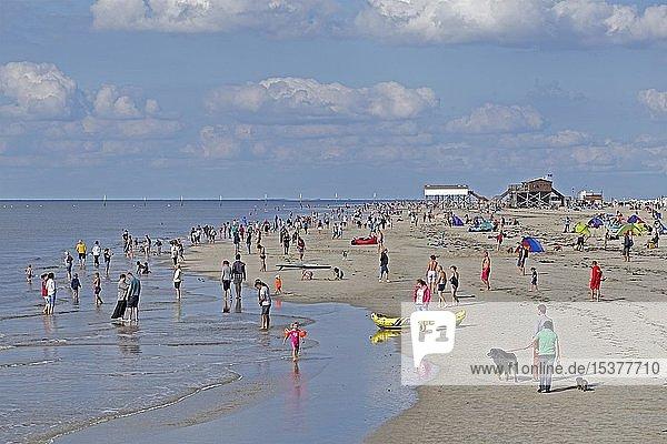 Strand  St. Peter-Ording  Schleswig-Holstein  Deutschland  Europa