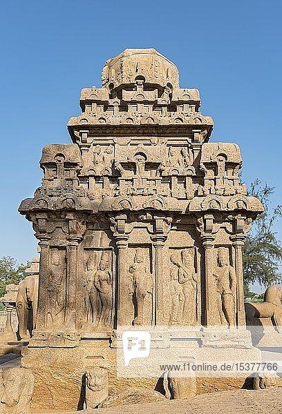 Arjuna Ratha Denkmal  Pancha Rathas  Fünf Rathas  Mahabalipuram  Mamallapuram  Indien  Asien