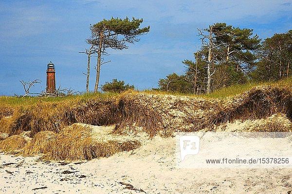 Leuchtturm am Weststrand von Prerow  Darss  Nationalpark Vorpommersche Boddenlandschaft  Mecklenburg-Vorpommern  Deutschland  Europa