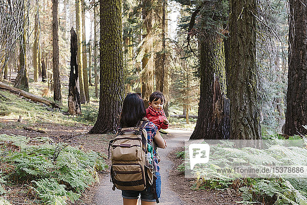 Mother holding a little girl in the forest in Sequoia National Park  California  USA
