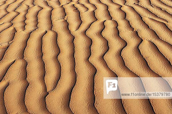 Oman  Geriffelter Sand auf einer Düne  Vollbild