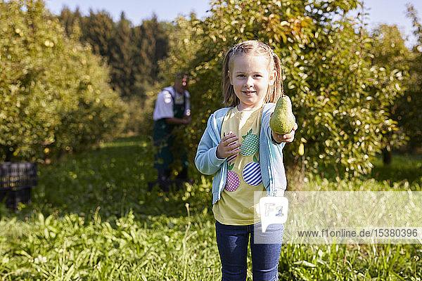 Mädchen erntet Bio-Williams-Birnen  zeigt eine Birne
