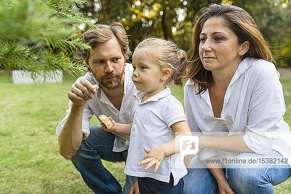 Eltern mit kleiner Tochter auf einer Wiese