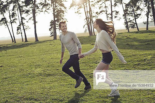 Glückliches junges Paar läuft Hand in Hand auf der Wiese