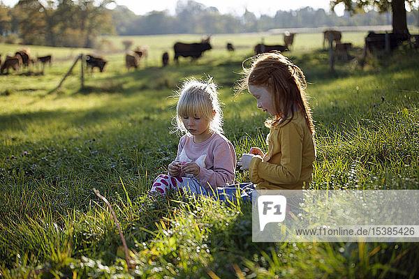 Two sisters sitting in rural field