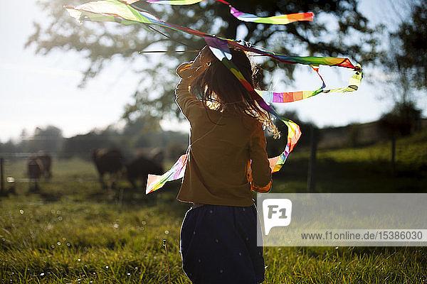 Rückansicht eines Mädchens im Feld mit Drachen