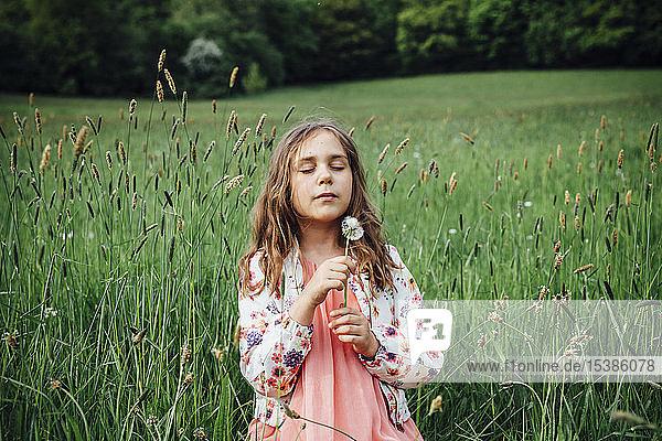 Porträt eines Mädchens mit Pusteblume auf einer Wiese