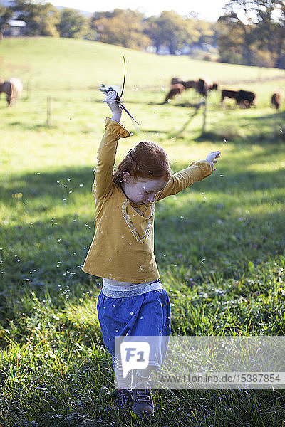 Redheaded girl dancing in field with blowball