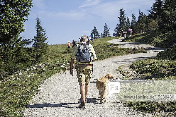 Deutschland  Bayern  Chiemgau  Kampenwand  älterer Mann wandert mit Golden Retriever