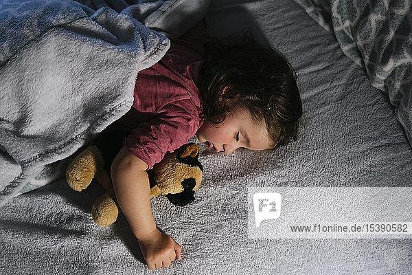 Kleinkind Mädchen schläft im Bett mit einem Stoffhund