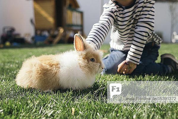 Kleiner Junge streichelt einen Hasen im Garten
