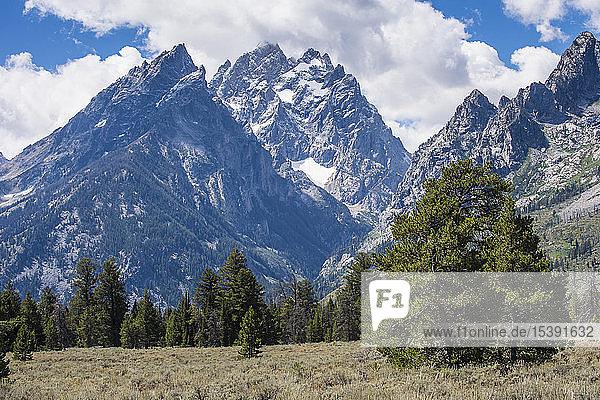 USA  Wyoming  Teton-Gebiet im Grand-Teton-Nationalpark