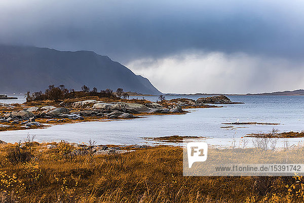 Norwegen  Lofoten  Gimsoysand  Küstenlandschaft