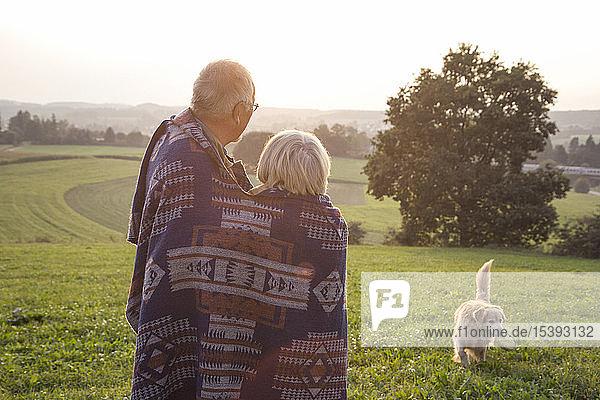 Rückenansicht eines älteren Ehepaares  das bei Sonnenuntergang auf einer Wiese steht und seinen Hund beobachtet
