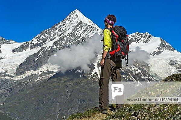 Woman with backpack looking at the Weisshorn peak above the Mattertal valley  Täschalp  Valais  Switzerland.