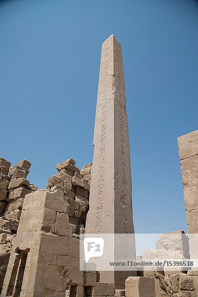 Luxor  Egypt a Carl Nike temples