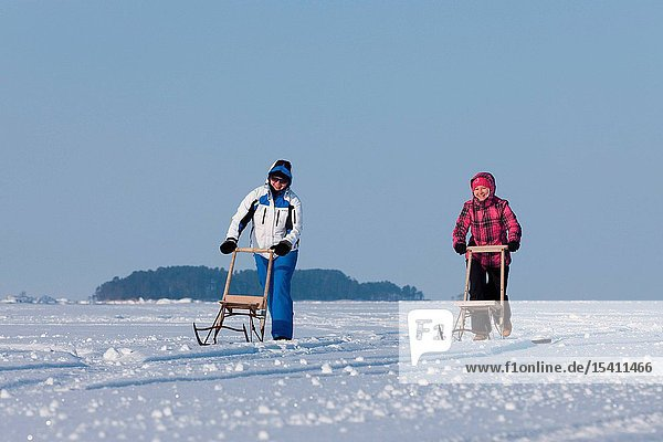 Women with kicksleds on the icy coast in Käsmu