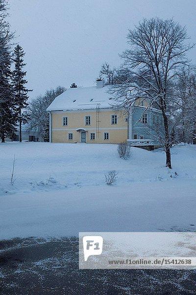 Vihula manor park in winter