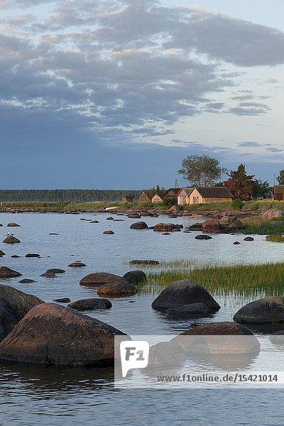 Coast in Käsmu