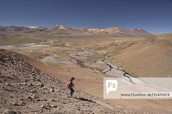 Trekking to the Rio Blanco near El Tatio Geyser  San Pedro de Atacama  Chile.